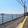 Photos: 終着駅の運河(1)