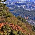 沿線の秋景色(5)