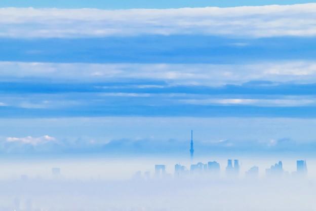 雲上の未来都市