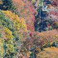 沿線の秋景色(8)