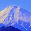 マクロ富士