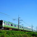 Photos: E233系@蒲須坂~片岡