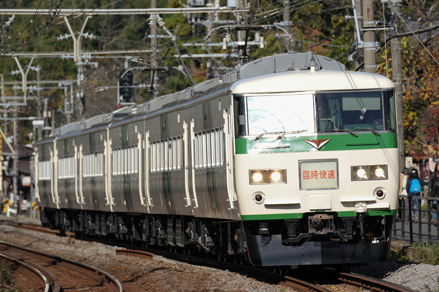 Photos: 185系「ホリデー快速鎌倉」@北鎌倉~鎌倉
