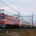 Photos: 8009レ EF81-81+E26系 カシオペア紀行@ワシクリ黒小屋踏切