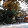 写真: 氷川神社