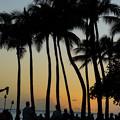 ビーチの夕景