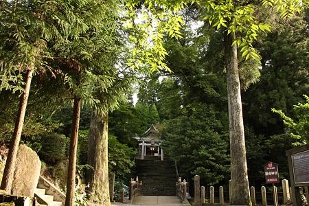 国造神社・参道2