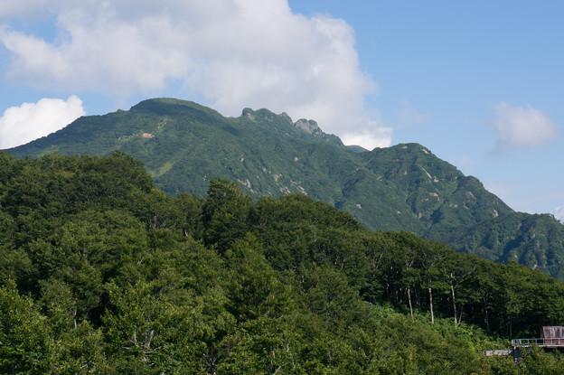 【八海山】3