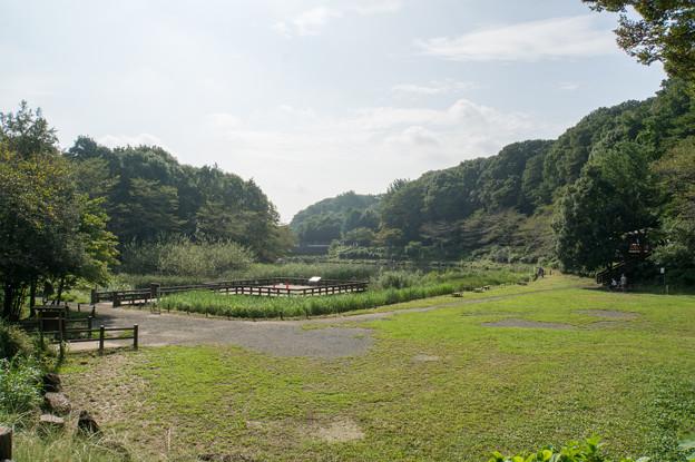 【泉の森(湿性植物園)】