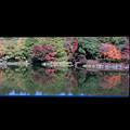 日本庭園の紅葉(3_1)昌陽から