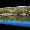 日本庭園の紅葉(7_2)昌陽から