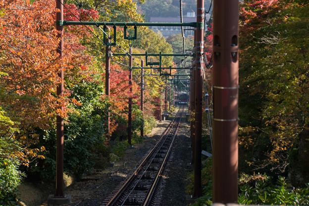 箱根美術館_箱根登山鉄道