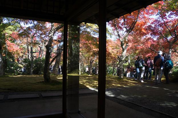 箱根美術館_茶室「真和亭」から見た庭園