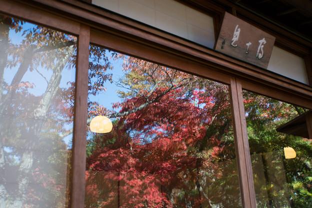 箱根美術館_富士見亭に映るモミジ