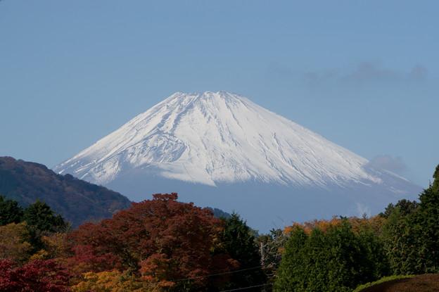 この日は富士山が絶景でした。