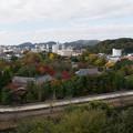 姫路城【44_百間廊下から見る紅葉】