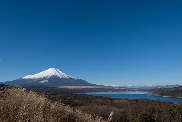 富士山【山中湖からの眺め】1