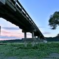 写真: 蓬莱橋(2)