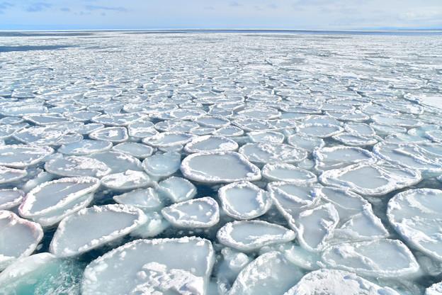 写真: 紋別流氷 (2)