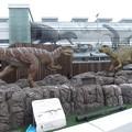 福井ステーション前の恐竜1