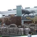 駅前の恐竜4