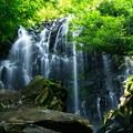 Photos: 森に轟く滝の音