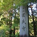 Photos: IMG_9668圓成寺