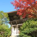 Photos: IMG_9677圓成寺・紅葉と楼門(重要文化財)