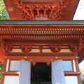 Photos: IMG_9698圓成寺・多宝塔