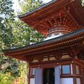 Photos: IMG_9699圓成寺・多宝塔