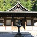 Photos: IMG_9702圓成寺・本堂(阿弥陀堂)(重要文化財)
