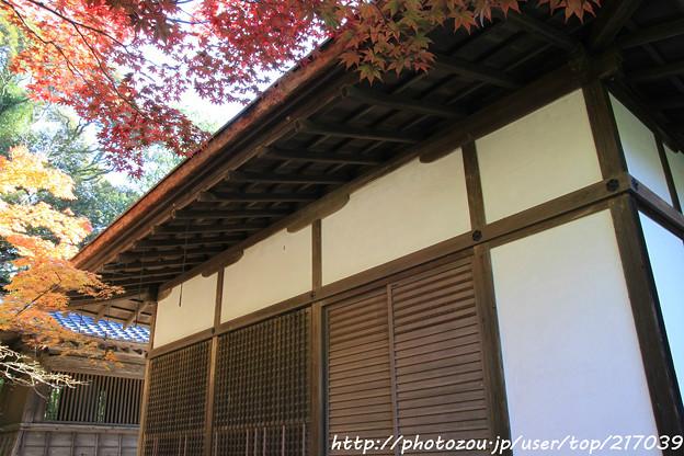 Photos: IMG_9707圓成寺・鎮守拝殿