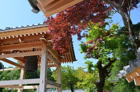 湖北 神護山醍醐寺 鐘楼 DSC_0116