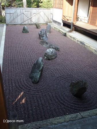 東福寺龍吟庵 不離の庭 P1110181