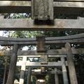 東福寺鎮守 五社成就宮 P1110244