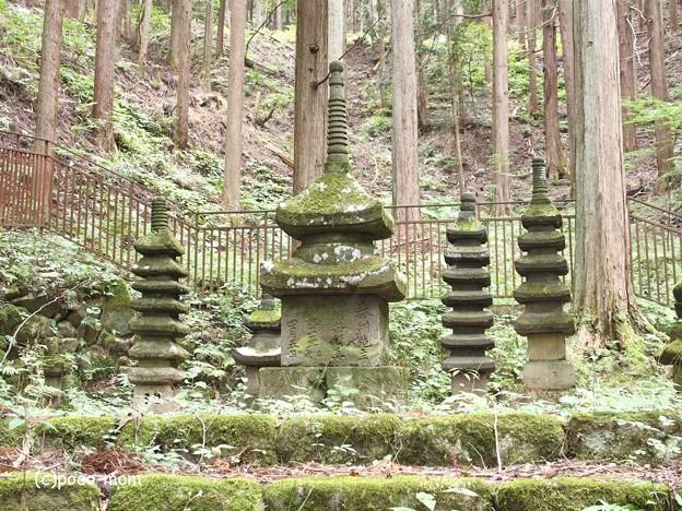 常楽寺 石造多宝塔 (石造多層塔)P8150119