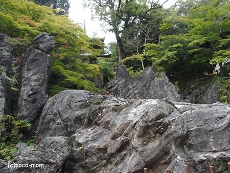 石山寺 硅灰石 P8270311
