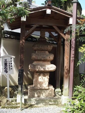 今熊野観音寺 泉涌寺塔頭 PA160645
