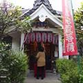 写真: 瑞泉寺 豊臣秀次公の墓 PA160744