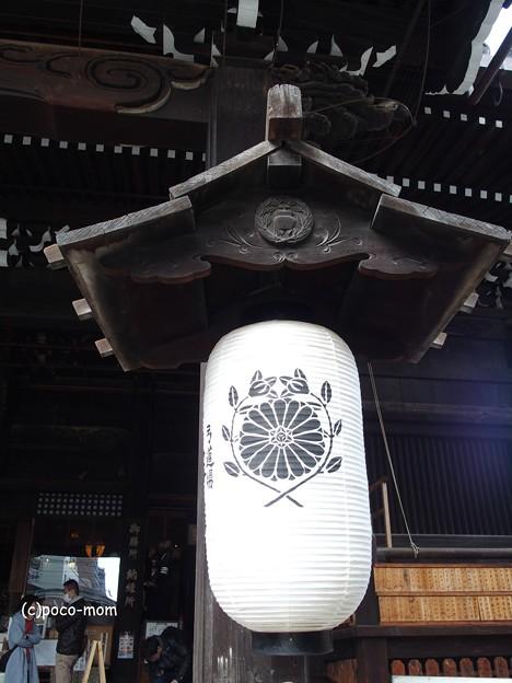 平等寺因幡堂 菊に橘 PB030239