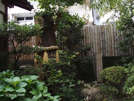 平等寺因幡堂 PB030291