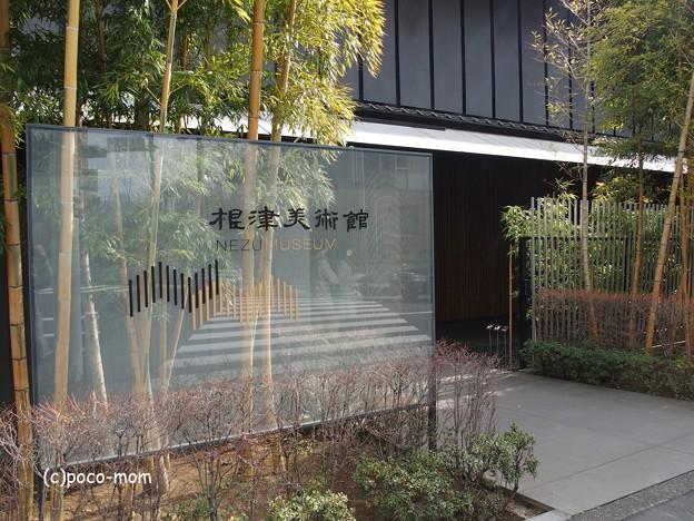 写真: 根津美術館 P3051091