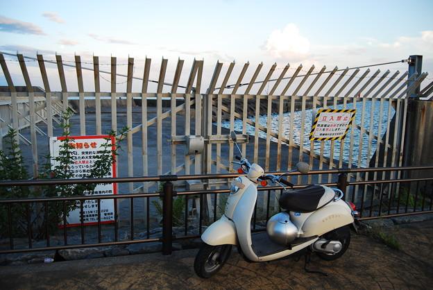 立ち入り禁止の防波堤・釣り人減らず1