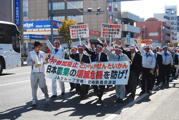 写真: TPP交渉参加阻止緊急集会5