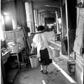 Photos: 5昭和回顧録