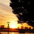 写真: 夕日の海
