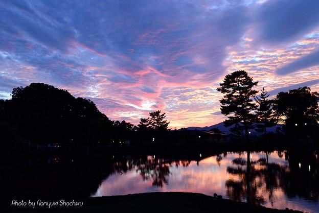 大仏池の夕景