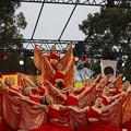九州がっ祭
