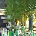Photos: 烏丸京都ホテルが改装中。スタバの前に竹がいっぱいでびっくりw(゜o゜)...