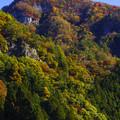 Photos: 渓谷歩き